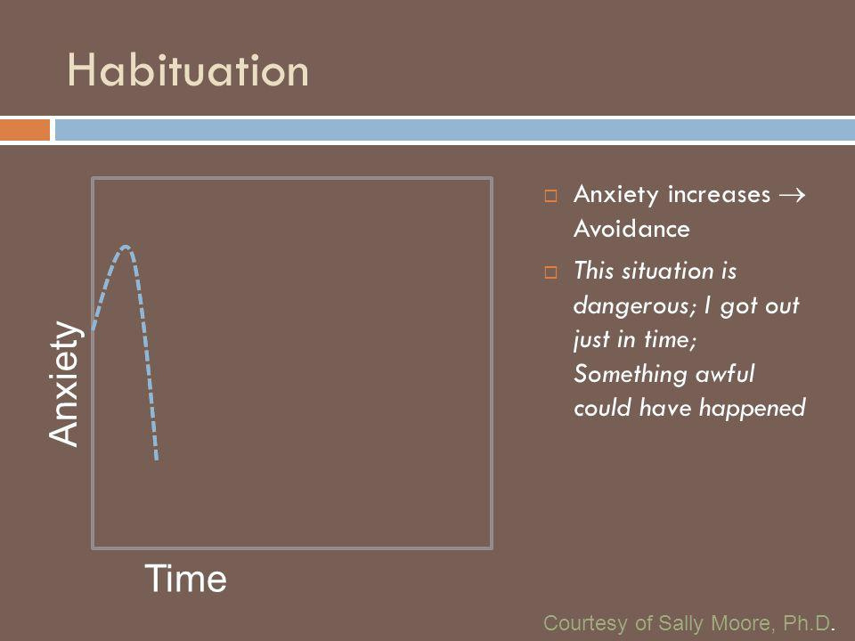 Habituation Anxiety Time Anxiety increases  Avoidance