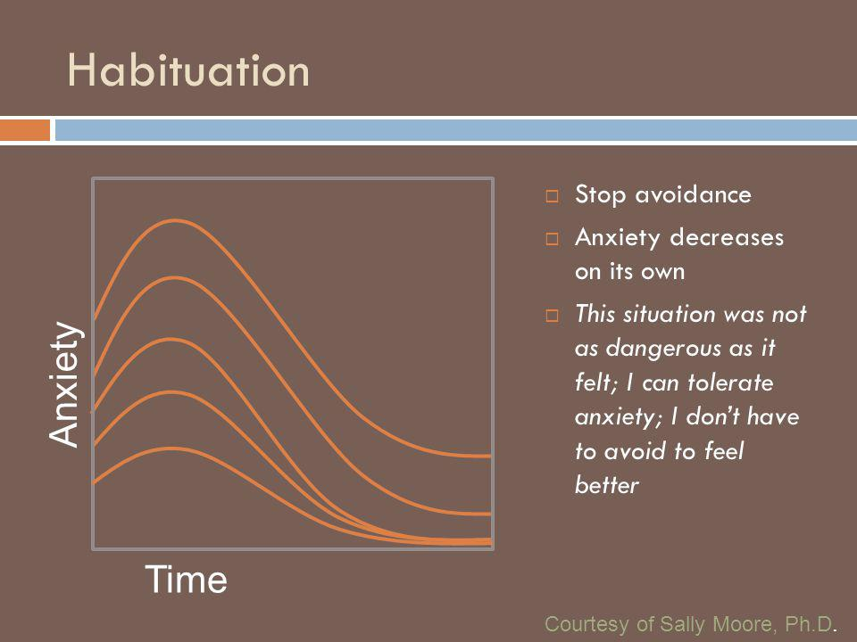 Habituation Anxiety Time Stop avoidance Anxiety decreases on its own