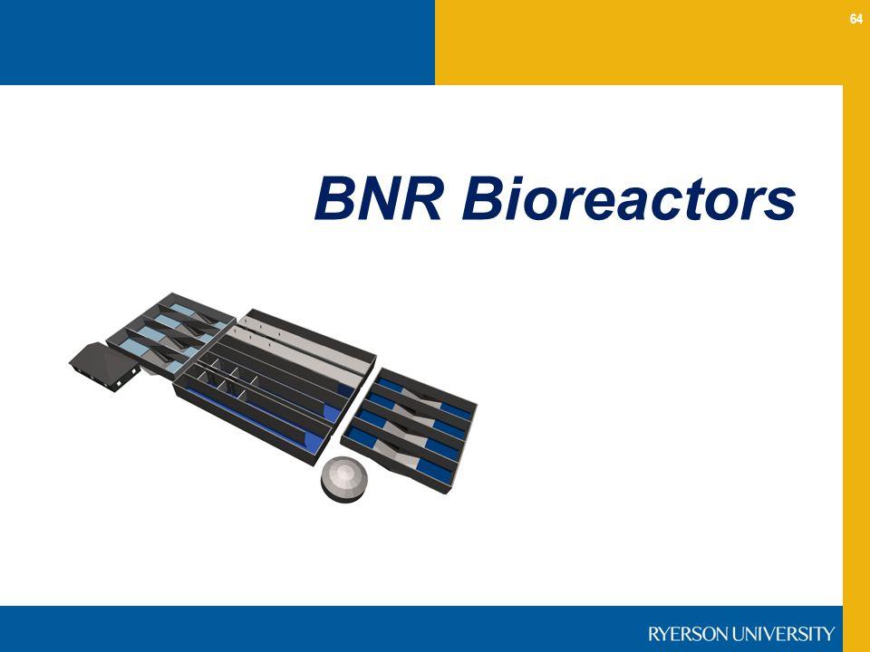 BNR Bioreactors