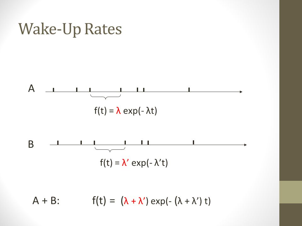 Wake-Up Rates A B A + B: f(t) = (λ + λ') exp(- (λ + λ') t)