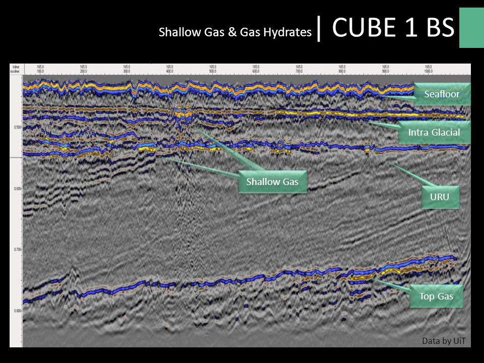 Shallow Gas & Gas Hydrates| CUBE 1 BS