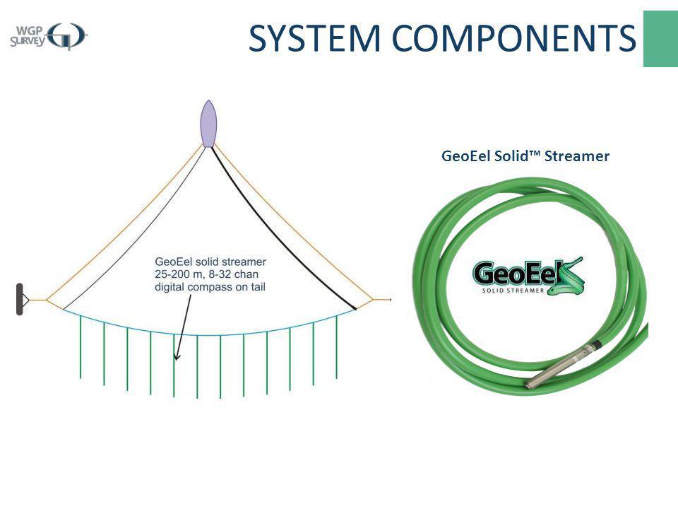 GeoEel Solid™ Streamer