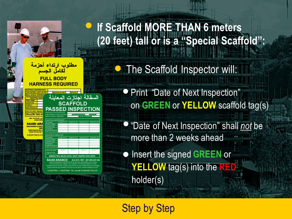The Scaffold Inspector will: