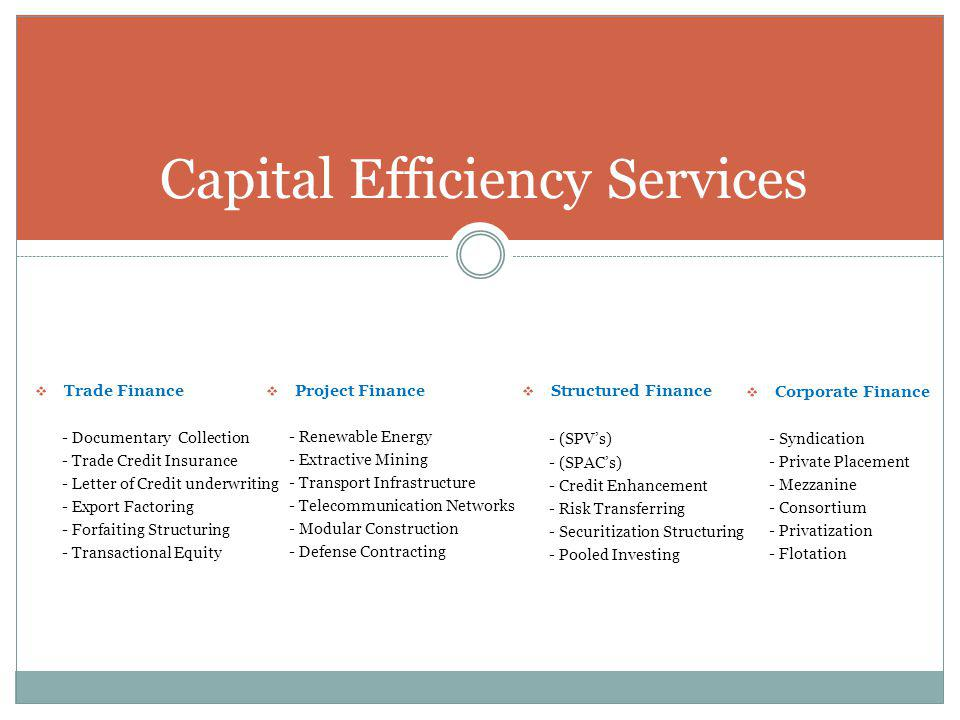 Capital Efficiency Services