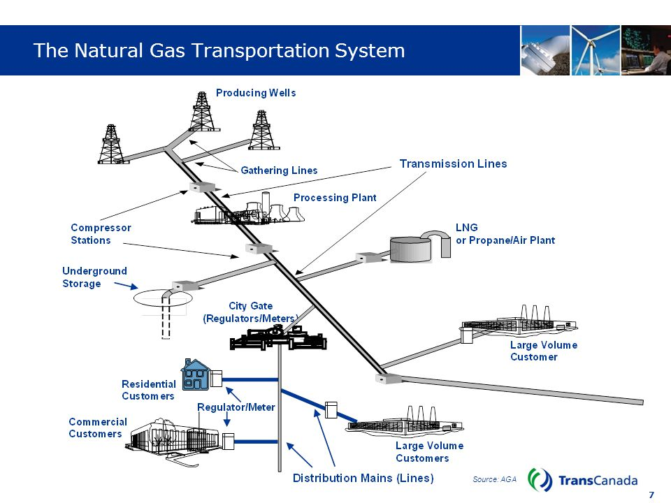 The Natural Gas Transportation System