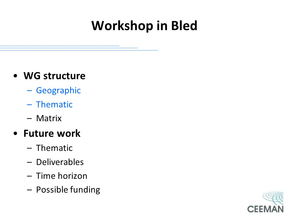Workshop in Bled WG structure Future work Geographic Thematic Matrix