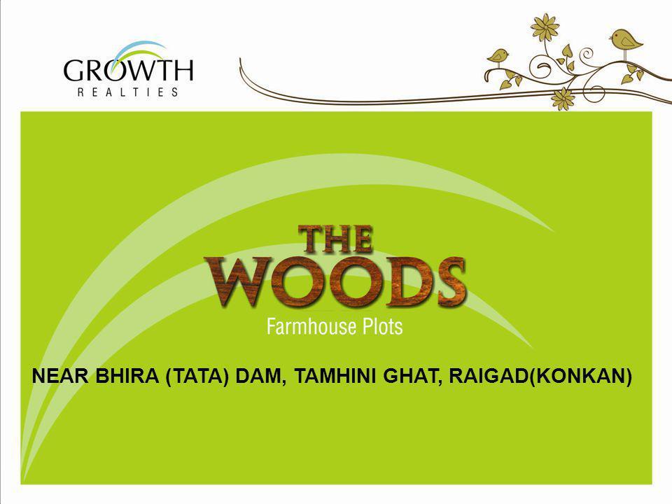 T H E WOODS NEAR BHIRA (TATA) DAM, TAMHINI GHAT, RAIGAD(KONKAN)