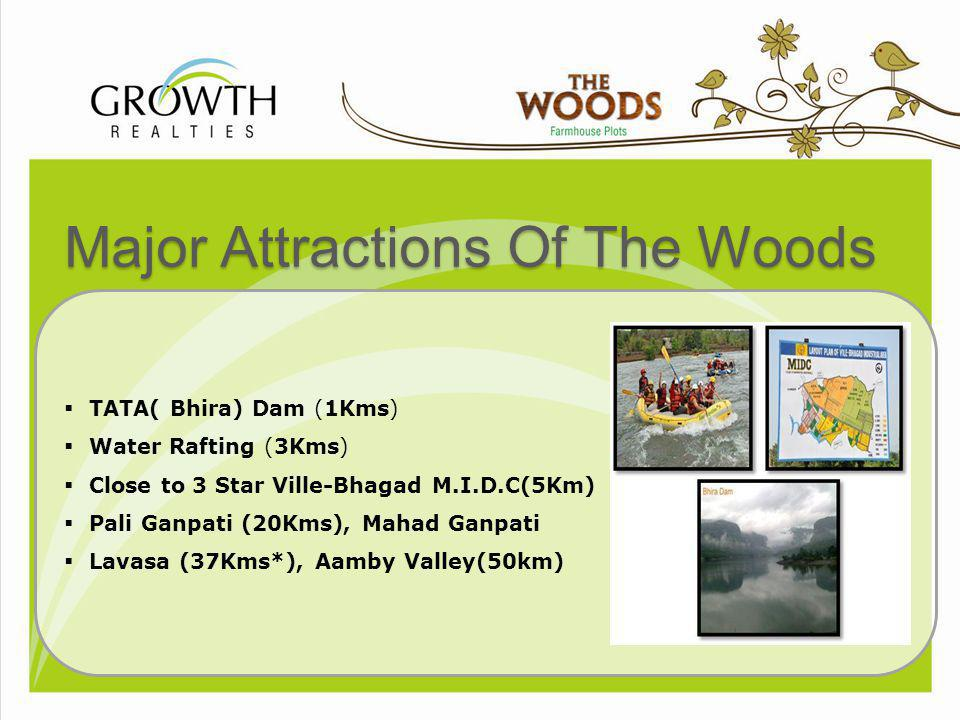 Major Attractions Of The Woods