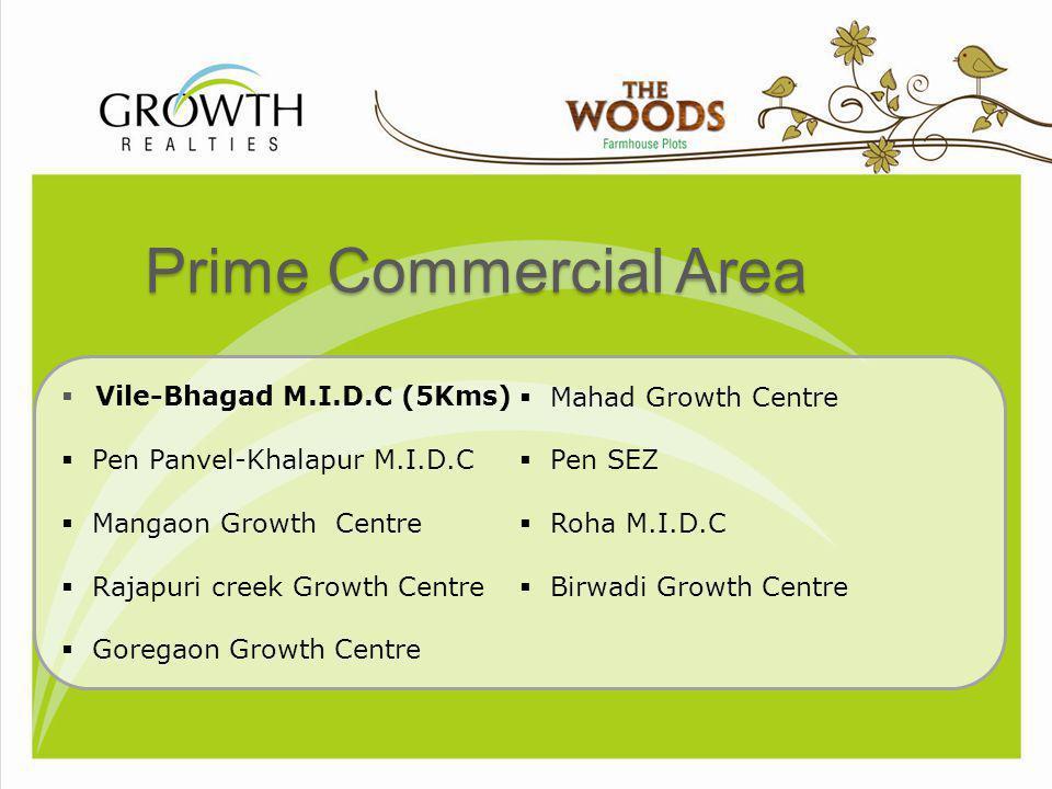 Prime Commercial Area Vile-Bhagad M.I.D.C (5Kms) Mahad Growth Centre