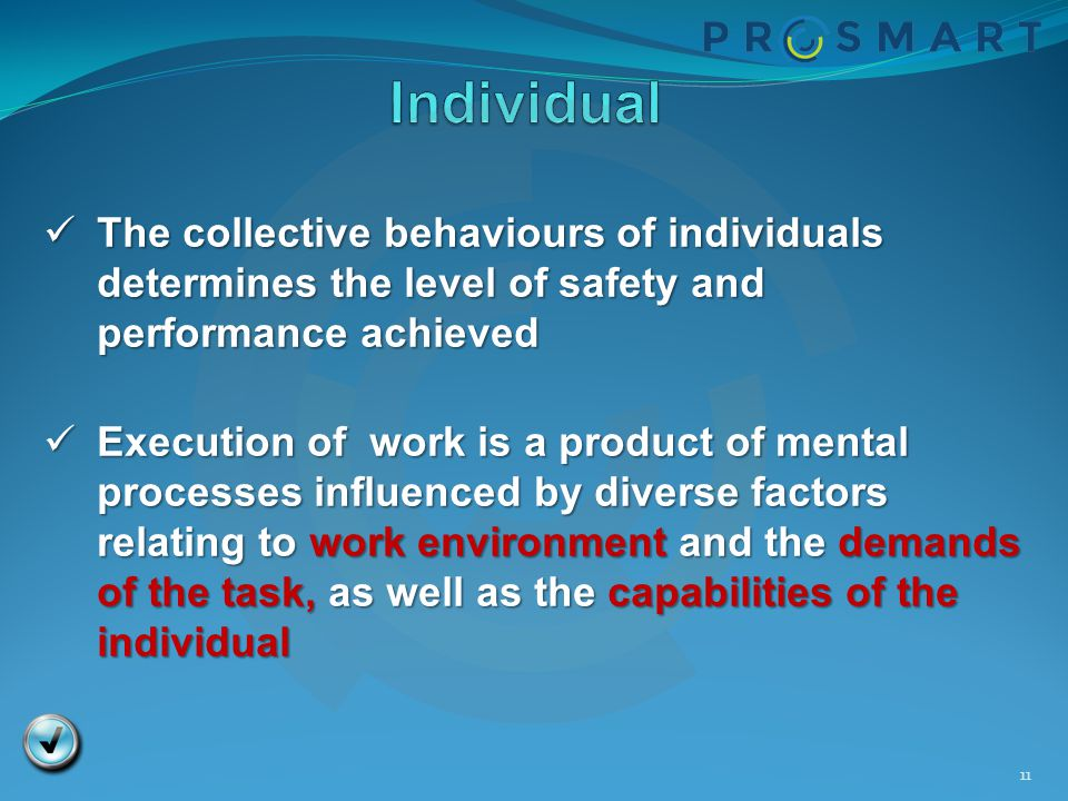 Individual The collective behaviours of individuals determines the level of safety and performance achieved.