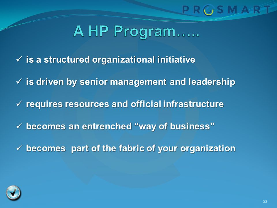 A HP Program….. is a structured organizational initiative