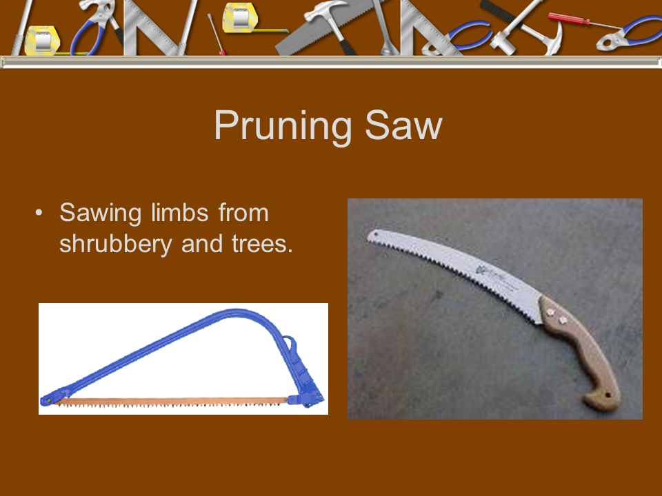 Pruning Saw Sawing limbs from shrubbery and trees.
