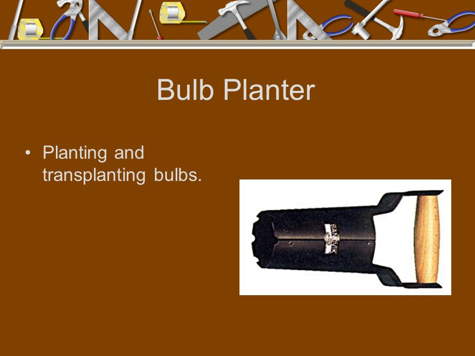 Bulb Planter Planting and transplanting bulbs.