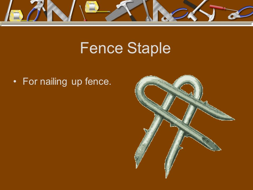 Fence Staple For nailing up fence.