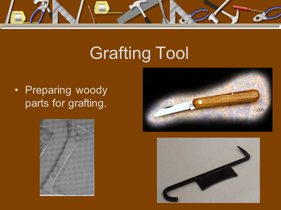 Grafting Tool Preparing woody parts for grafting.