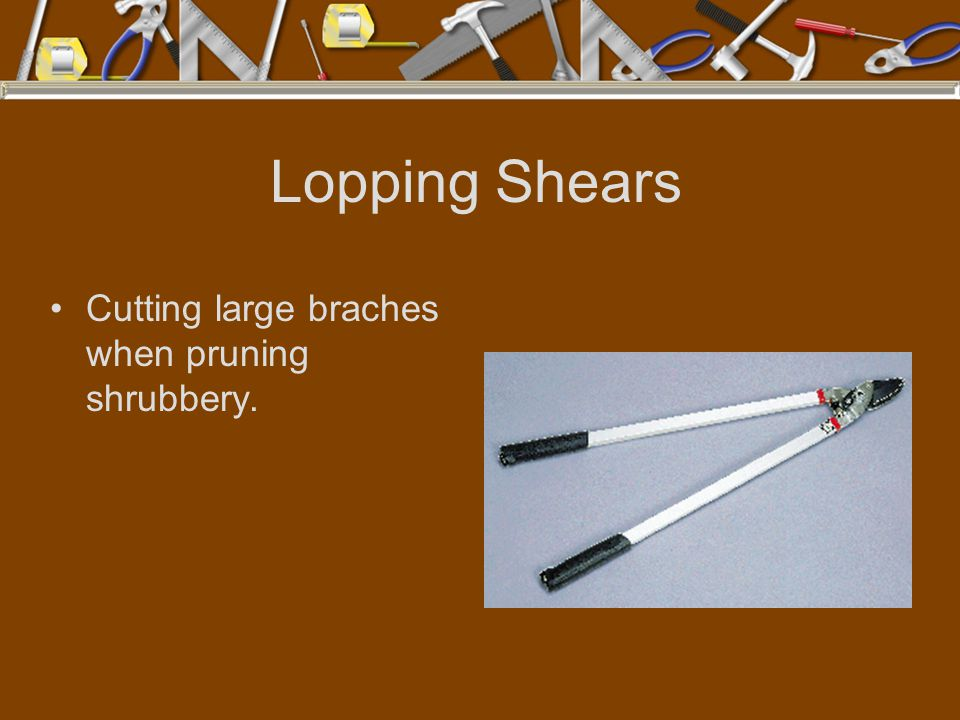 Lopping Shears Cutting large braches when pruning shrubbery.