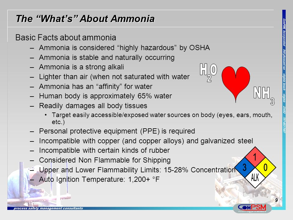 The What's About Ammonia