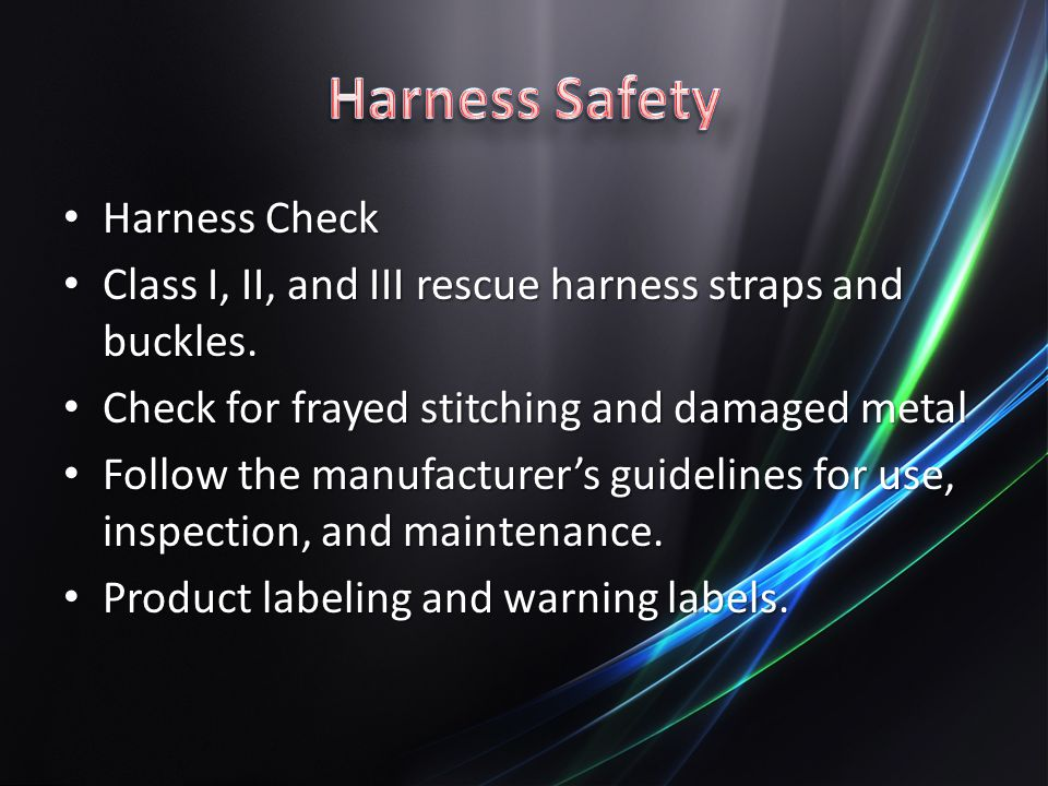 Harness Safety Harness Check
