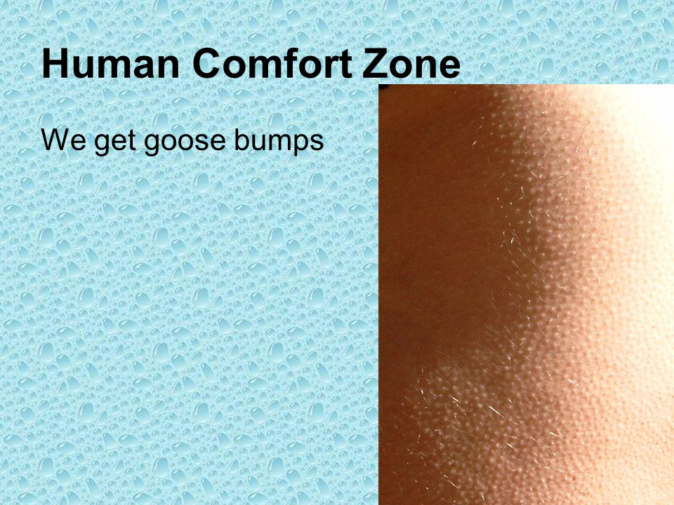 Human Comfort Zone We get goose bumps
