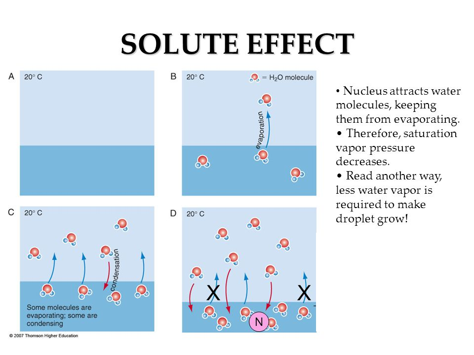 SOLUTE EFFECT Nucleus attracts water molecules, keeping them from evaporating. Therefore, saturation vapor pressure decreases.