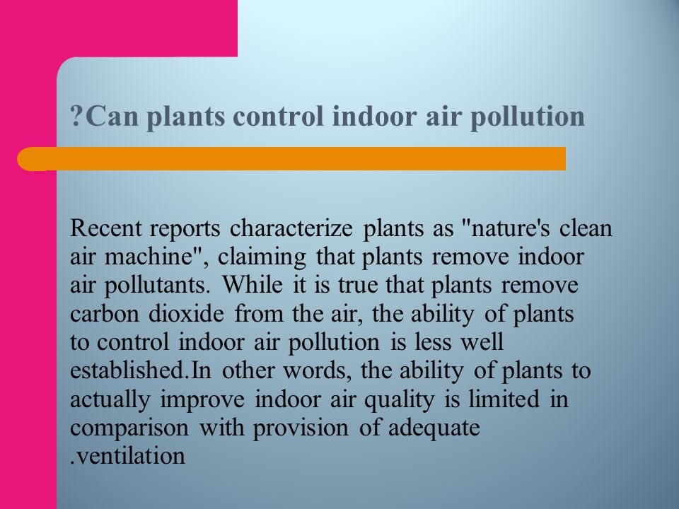 Can plants control indoor air pollution
