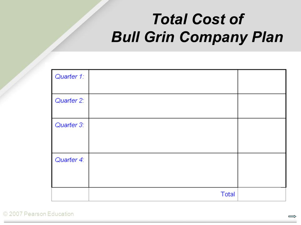 Total Cost of Bull Grin Company Plan