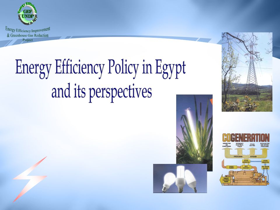 Energy Efficiency Policy in Egypt and its perspectives