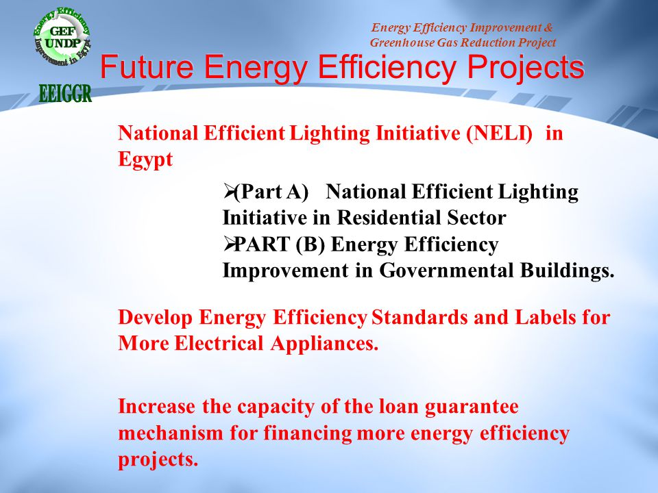 Future Energy Efficiency Projects