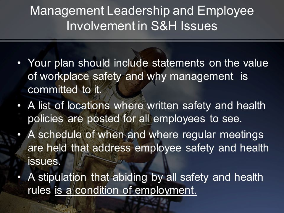 Management Leadership and Employee Involvement in S&H Issues