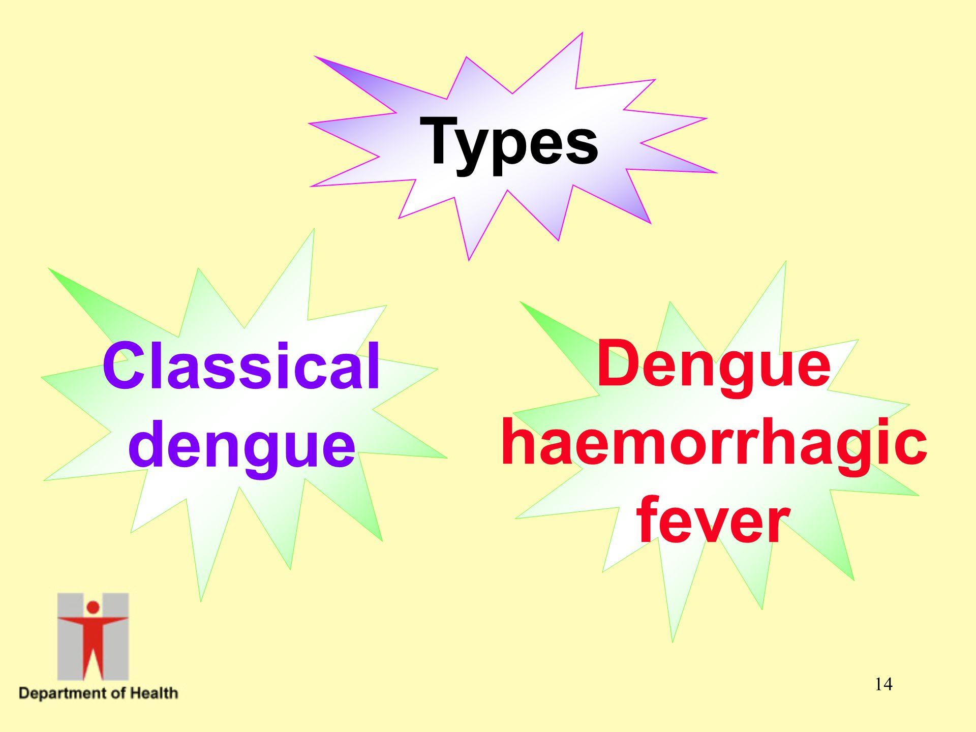 Types Classical dengue Dengue haemorrhagic fever