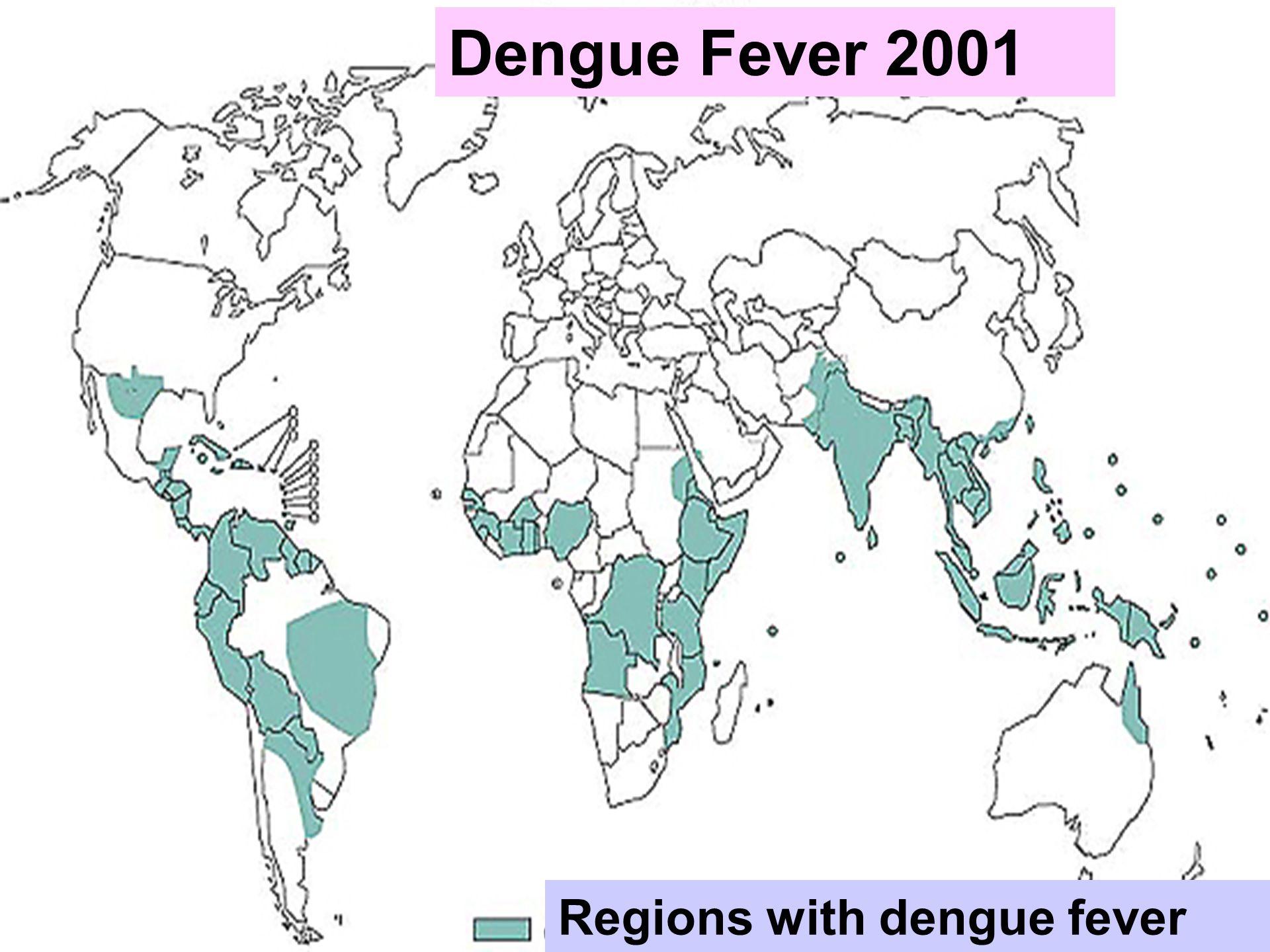 Dengue Fever 2001 Regions with dengue fever