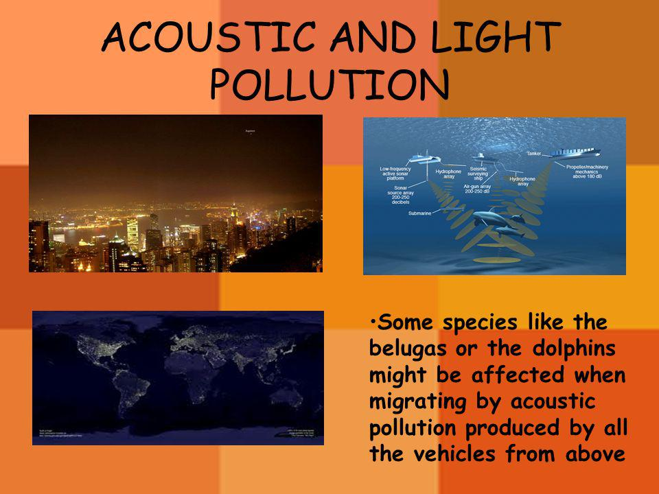 ACOUSTIC AND LIGHT POLLUTION