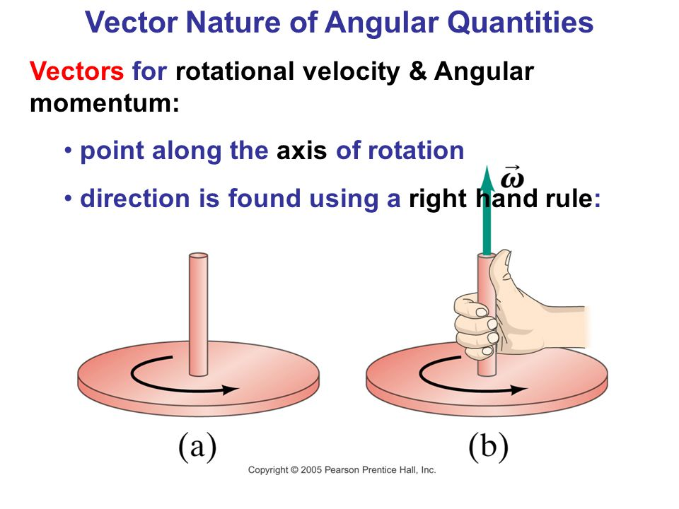 Vector Nature of Angular Quantities