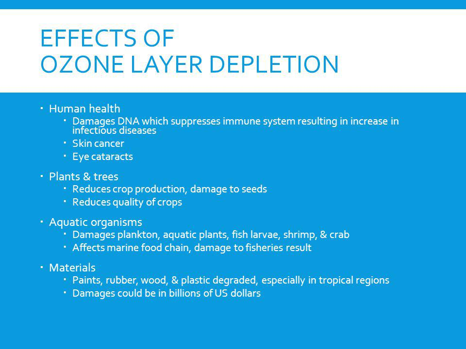 Effects of ozone layer depletion