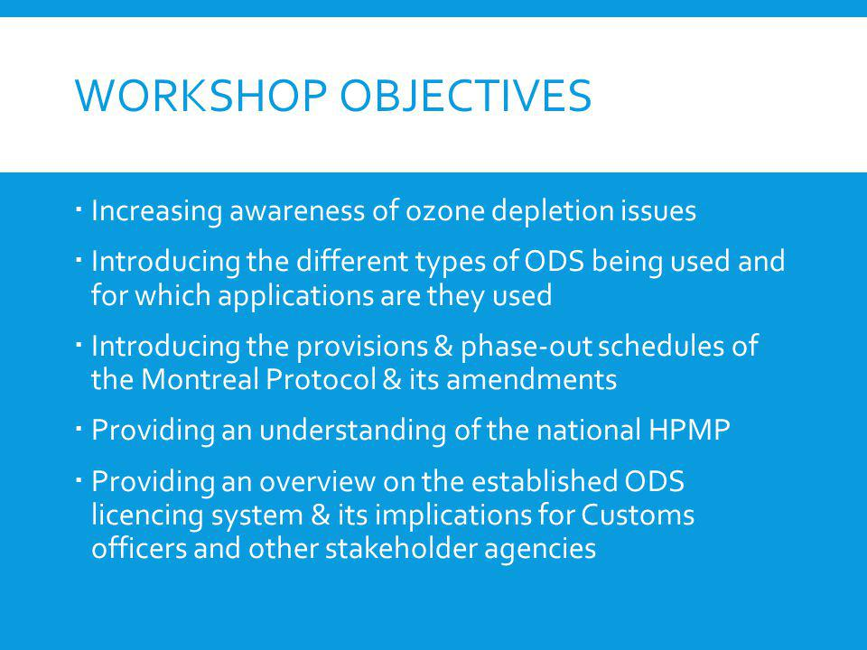 Workshop objectives Increasing awareness of ozone depletion issues