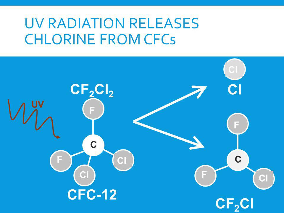 UV radiation releases chlorine from CFCs