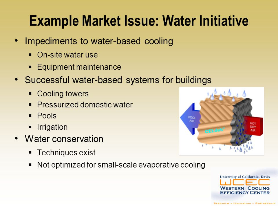 Example Market Issue: Water Initiative
