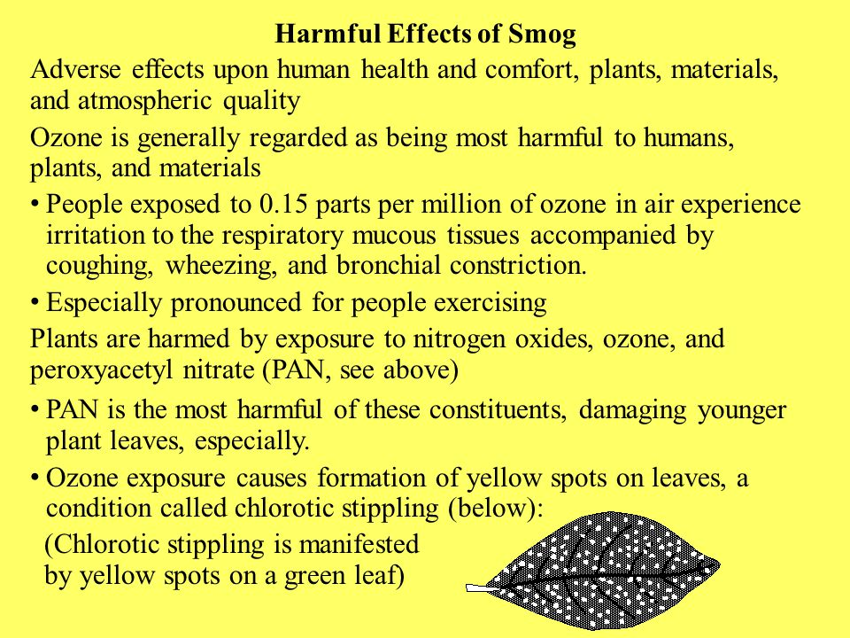 Harmful Effects of Smog