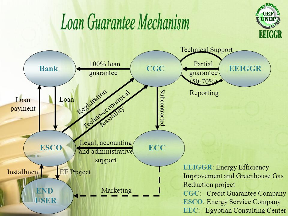 Loan Guarantee Mechanism