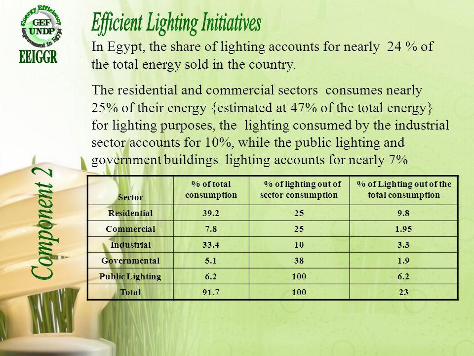 Efficient Lighting Initiatives