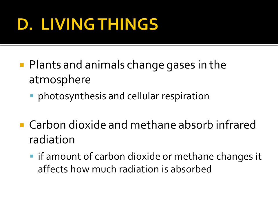 D. LIVING THINGS Plants and animals change gases in the atmosphere