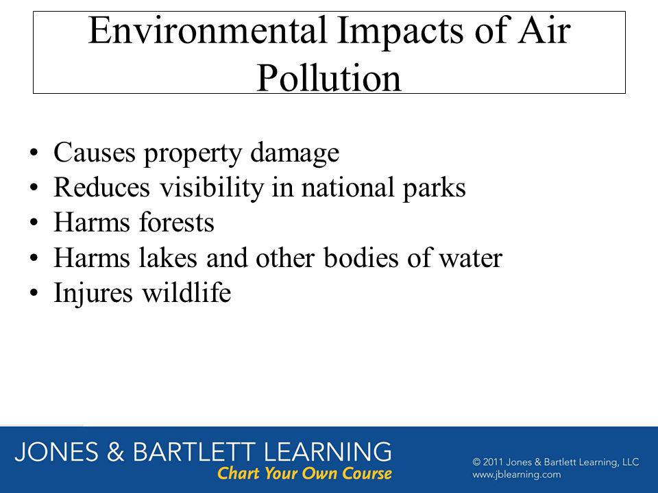 Environmental Impacts of Air Pollution