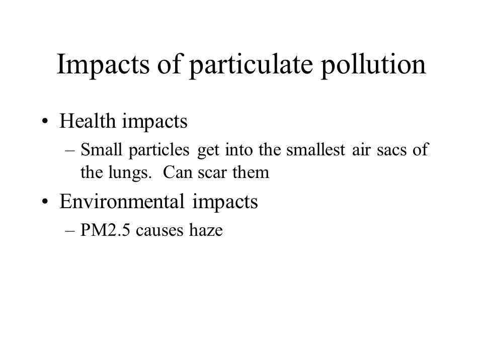Impacts of particulate pollution