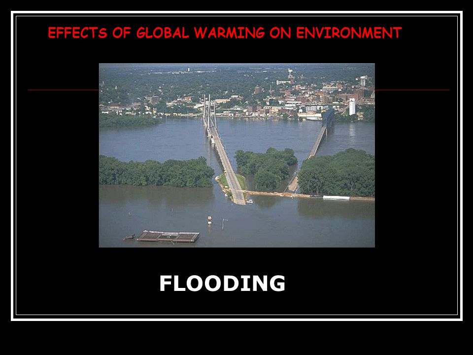 EFFECTS OF GLOBAL WARMING ON ENVIRONMENT