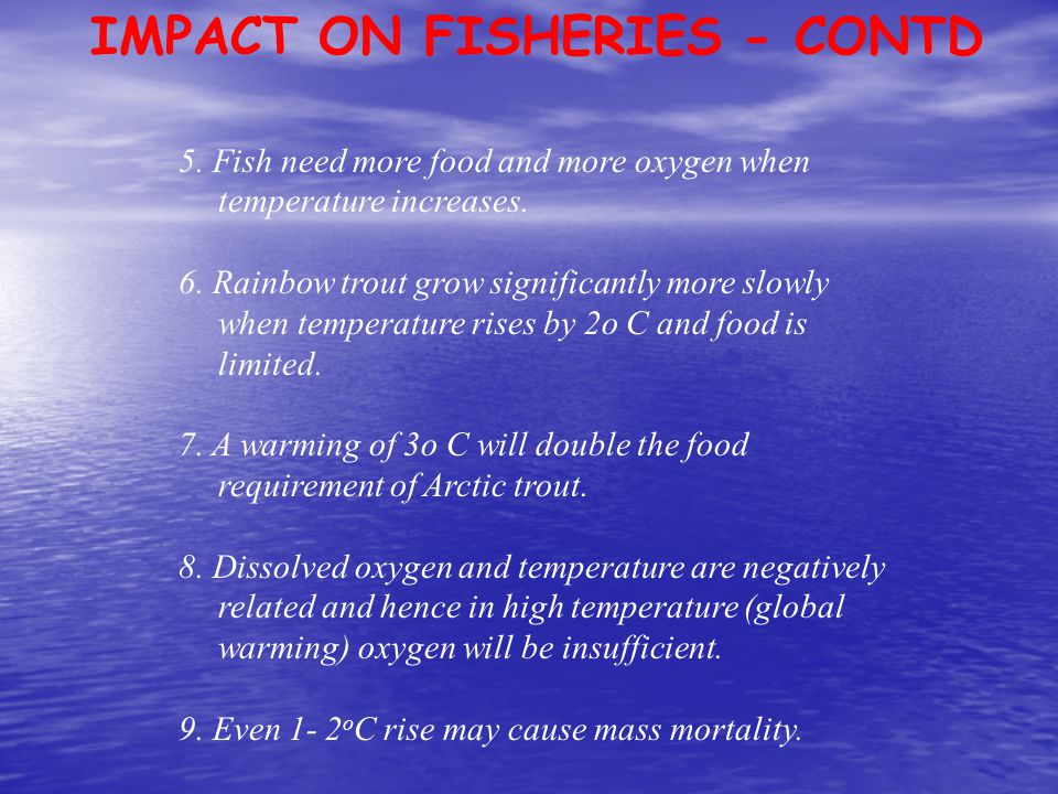 IMPACT ON FISHERIES - CONTD
