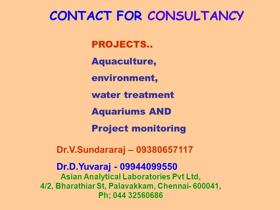 CONTACT FOR CONSULTANCY