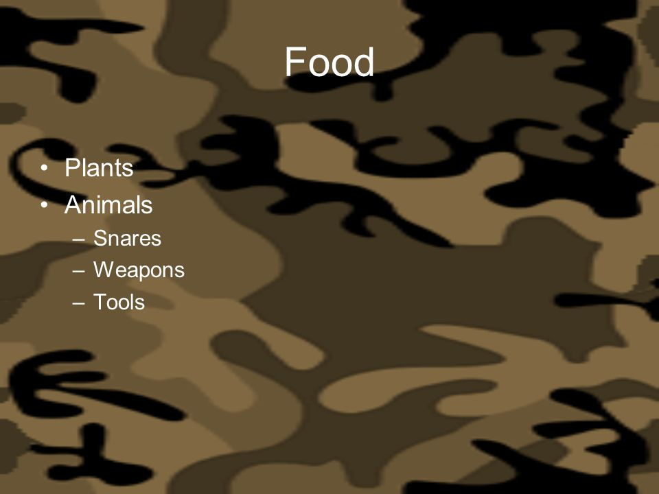 Food Plants Animals Snares Weapons Tools