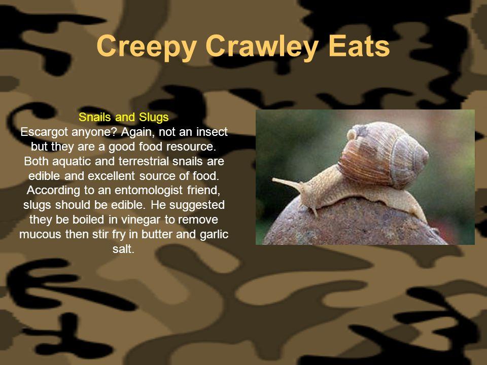 Creepy Crawley Eats Snails and Slugs