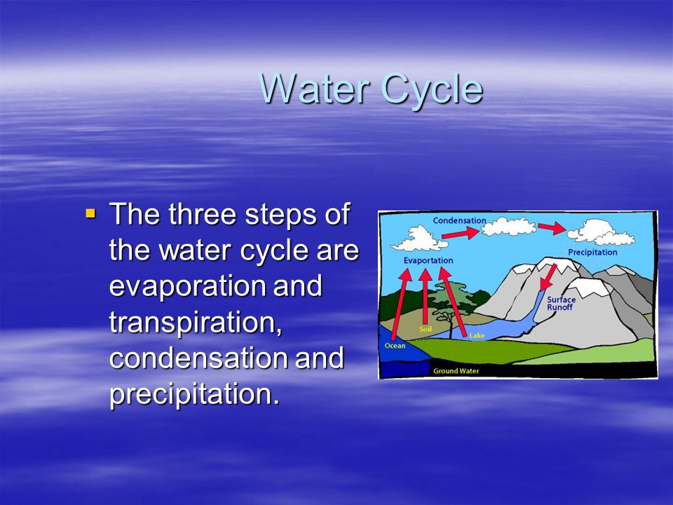Water Cycle The three steps of the water cycle are evaporation and transpiration, condensation and precipitation.