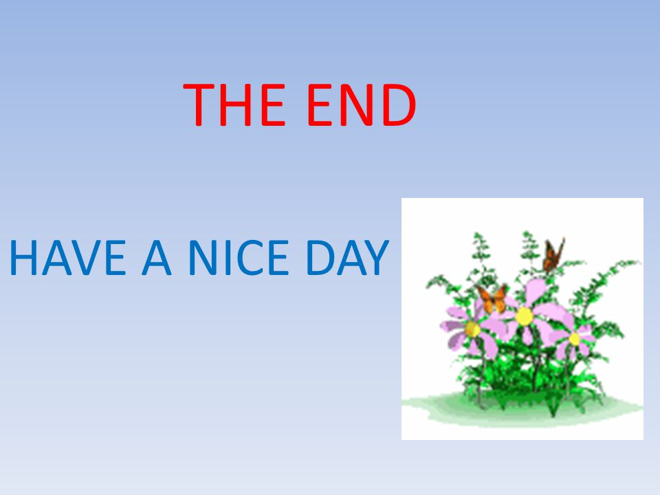 THE END HAVE A NICE DAY